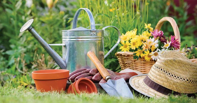 Itt a tavasz! Éled a kert!