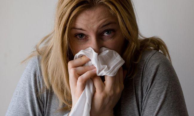 Hatékony gyógynövények a megfázásra és az influenzára