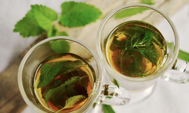 Gyógy- és fűszernövények - Menta tea