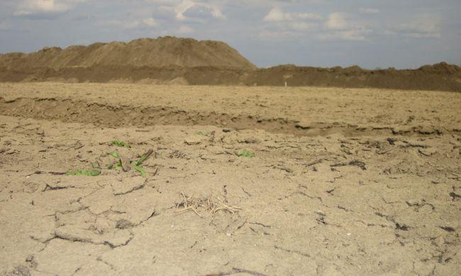 Az aszályosodás, sivatagosodás minket is érint…